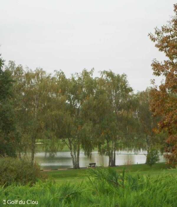 Le Clou, un golf qui swing entre terre et eau pour les inconditionnels de la nature